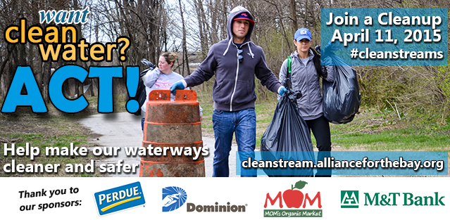 Join a Project Clean Stream cleanup!